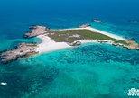 Snorkeling At Daymaniat Islands. Mascate, OMAN
