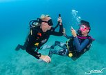 Try SCUBA Diving: 2 dives 1 day, Ko Tao, TAILANDIA