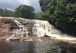 Tour a Cachoeiras Presidente Figueiredo - Desde Manaos,