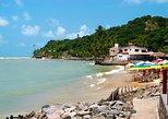 Tour Praia da Pipa - Desde Natal,