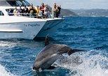 Bay of Islands and Cape Brett Catamaran Cruise. Bahia de Islas, New Zealand