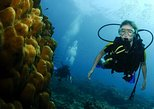 Scuba Review for certified Divers, Krabi, TAILANDIA