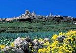 Mdina, Dingli cliffs and San Anton Gardens guided tour, ,
