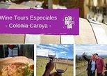Private Wine Tour - Colonia Caroya. Cordova, ARGENTINA