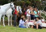 Equestrian trail rides, Terceira, PORTUGAL