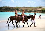 Horseback Riding from Runaway Bay and Ocho Rios. Runaway Bay, JAMAICA