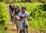 Islands of the Mekong Guided Bike Tour from Phnom Penh Inclusive of Lunch. Phnom Penh, Cambodia
