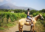 Pompei Ruins & Horseback riding on Vesuvius with Lunch!. Pompeya, ITALY
