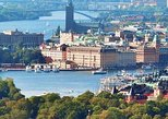 Private Stockholm City Tour by VIP car Vasa and Skansen museum,