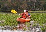 Kayaking in the Chagres River. Gamboa, Panama
