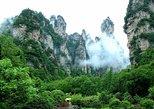 Zhangjiajie National Park Private Day Tour, Zhangjiajie, CHINA