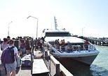 Khao Sok to Koh Tao by Shared Minivan and Lomprayah High Speed Catamaran, ,