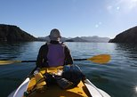 Half day Sea Kayak Guided Tour from Picton, Picton, NOVA ZELÂNDIA
