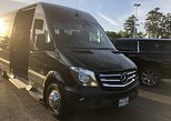 Arrival Private Transfer Houston Airport HOU to Houston City by Sprinter Minibus, Houston, TX, ESTADOS UNIDOS