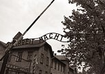 From Krakow: Auschwitz - Birkenau and Salt Mine in One Day Private Tour. Oswiecim, Poland