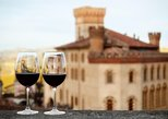Barolo Wine Tasting Private Vineyard Tour, Snack, Hotel Pickup. Langhe-Roero y Monferrato, ITALY