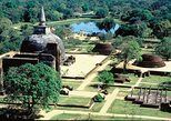 Polonnaruwa Kingdom and Wild Elephant Safari from Dambulla (Private Day Tour). Anuradhapura, Sri Lanka