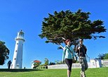 Tiritiri Matangi Island Day Tour, Guided Walk Option,