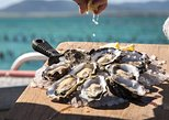 Pure Coffin Bay Oysters - Short and Sweet Oyster Farm Tour. Port Lincoln, AUSTRALIA