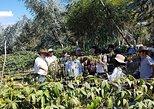 Agroturismo. Otavalo, ECUADOR