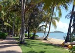 Palm Cove, Clifton Beach, Kewarra Beach to/from Cairns (one way transfer), ,