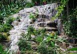 Konoko Falls and Garden Tour from Falmouth, Montego Bay, JAMAICA