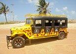 Pipa Jeep Tour com Arvorismo,