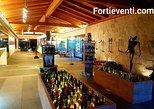 Winery, a taste of Sardinia - Italy. Olbia, ITALY
