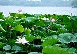 Private Jinan City Tour including Baotu Spring Park, Daming Lake and More, Jinan, CHINA