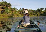 Best of Tambopata 3 Days 2 nights with Chuncho Macaws clay lick, Puerto Maldonado, PERU