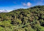 Excursão de arvorismo em pontes suspensas no Selvatura Park em Monteverde. Monteverde, Costa Rica