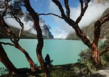 4-Day Trekking Around Llanganuco Santa Cruz. Huaraz, PERU