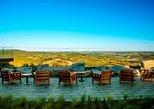 Punta del Este Wine Tour, Bodega Garzon, Private Transfer. Punta del Este, Uruguay