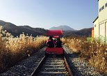 Day Trip to Nami Island with Rail bike and The Garden of Morning Calm, Seul, COREIA DO SUL