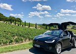 Luxurious full day wine tour in a Tesla (8h). Bordeaux, FRANCE