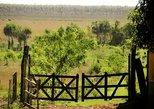 Día de Campo en el Chaco - Explorá Cerrito,