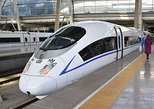 One way Wenzhou Nan train station to hotel transfer, Wenzhou, CHINA