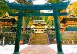 Private tour: Chartered car from Tokyo to Nikko, Toshogu, Edo Wonderland etc, Tokyo, JAPON