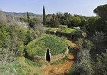 Cerveteri - The Etruscan Necropolis Private Tour from Rome, Lago Bracciano, Itália