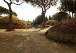Cerveteri Etruscan Necropolis from Civitavecchia Sea Port Private Tour, Lago Bracciano, ITALIA