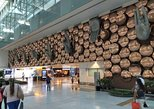 Deli Indira Gandhi Airport (DEL) Transfer privado para o hotel. Nueva Delhi, Índia
