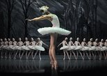 Skip the Line: Swan Lake Ballet Ticket in St Petersburg with Hotel Delivery,
