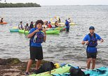 Bioluminescent Bay Night Kayaking Tour 5:30pm | Laguna Grande, Fajardo, ,