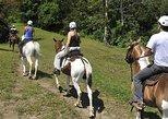 Cabalgata a caballo, Visita a una familia costarricenses en una finca., Tamarindo, COSTA RICA