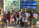 Tour Lagos & Chiflon. San Cristobal de Las Casas, MEXICO