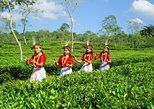Private Tour: 5 Days - Bangladesh Nature & Culture Tour - North-eastern part,