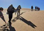 Swakopmund Dune Sanboarding Day Tour. Swakopmund, Namibia