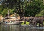 Chobe Full Day Safari (including transfers from Livingstone, Zambia to Botswana), Livingstone, Zimbabwe