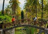 Aventura tropical en bicicleta en Mazatlán,