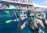 Crucero de esnórquel de un día completo en la Gran Barrera de Coral desde Cairns. Cairns y el Norte Tropical, AUSTRALIA